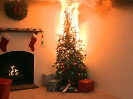 Don't let your Christmas tree dry out!