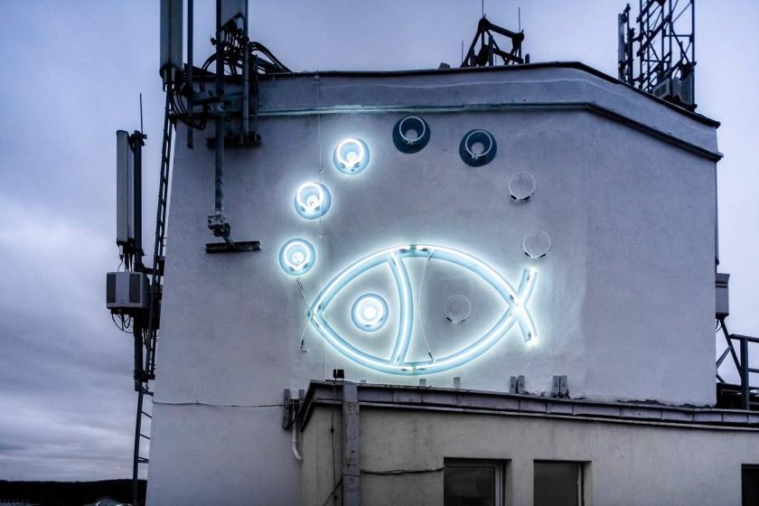 Neon stworzony w ramach Traffic Design. Fot. Rafał Kołsut.
