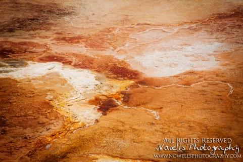 yellowstone-3_086