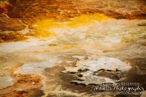 yellowstone-3_093