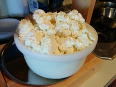 Curds in the mold.