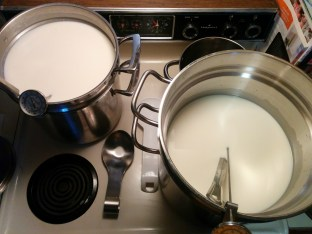 4 gallons of milk split between two pots