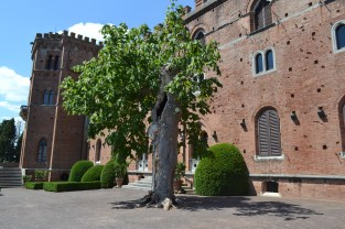 The oldest tree on the castle grounds. It was hollowed out by a grenade in World War 2