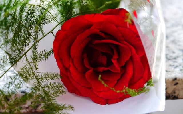 La St Valentin, au bout du monde...