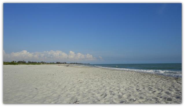 plages floride