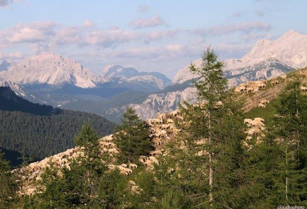 Les Dolomites - Flickr Claudio Scarponi