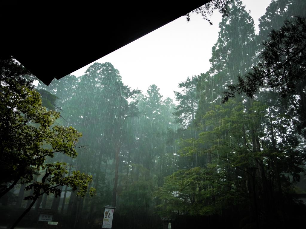 """Nous avons eu un """"peu"""" de pluie ..."""