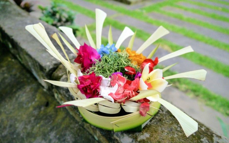contempler les offrandes à Ubud