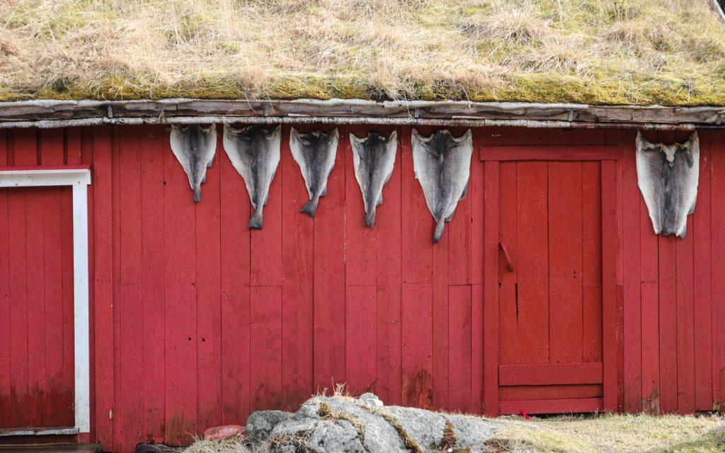 Une cabane de pêcheur sur les îles Lofoten