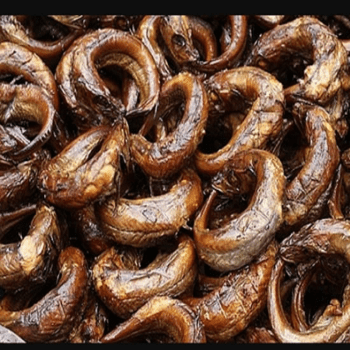 Image of freshly smoked panla fish on Now Now Express for sending fish to Nigeria