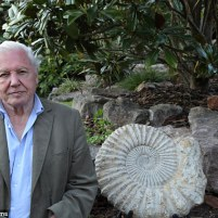 25458d1300000578-2936566-attenborough_is_currently_filming_a_series_about_fossils_this_am-a-3_1422896662040