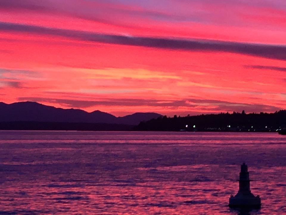 Elliot Bay. Seattle, WA. 7/15/2015.  Taken with iPhone 6+