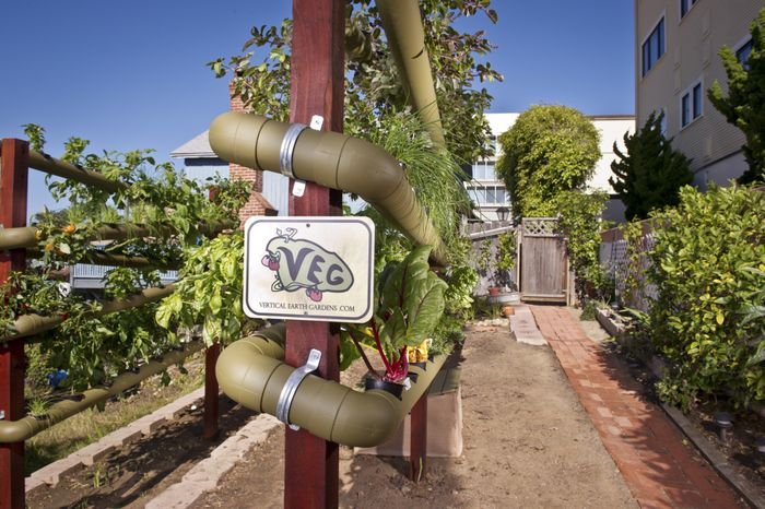 Źródło: http://veggardens.com/