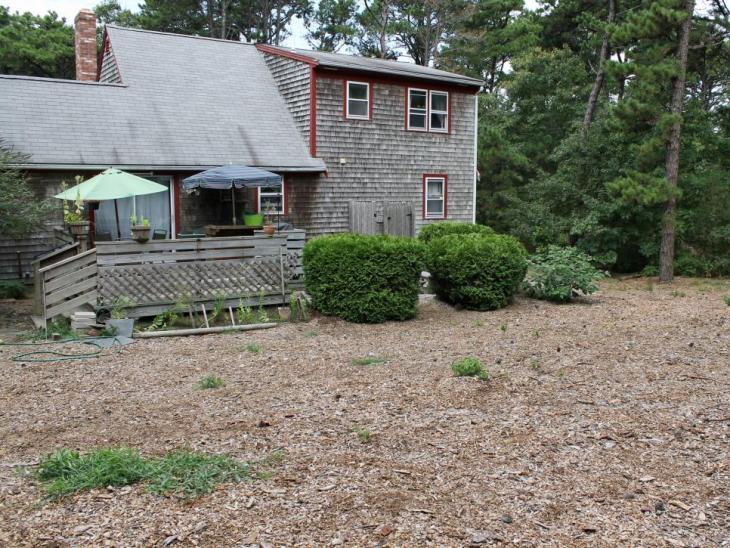 Ogród1_przed