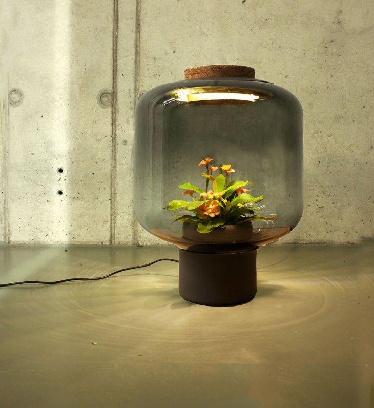 zielona lampa 3