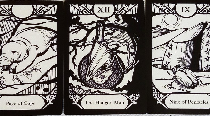 Animalis Os Fortuna: Page of Cups, The Hanged Man, & Nine of Pentacles.