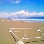 平塚の海水浴場