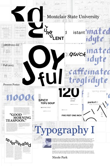 type1-process-poster3