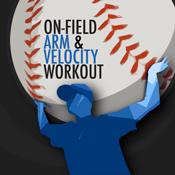 Arm and Velocity Logo