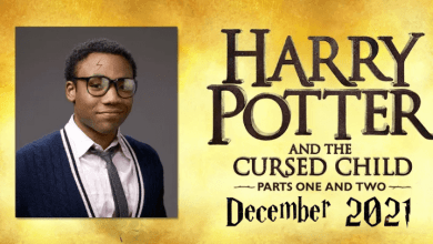 Photo of Donald Glover will play grown-up Harry Potter in 2021 Cursed Child movie