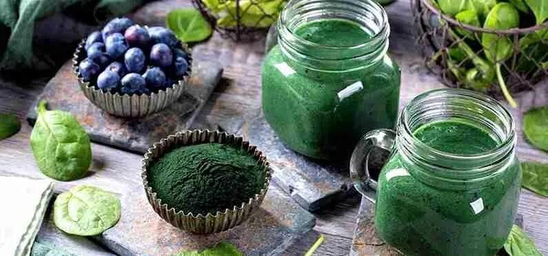 Vegani e Vegetariani spirulina