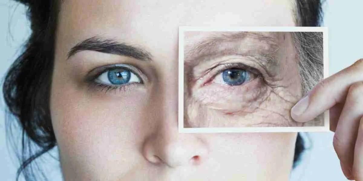 L'invecchiamento cellulare può essere rallentato grazie alla Spirulina