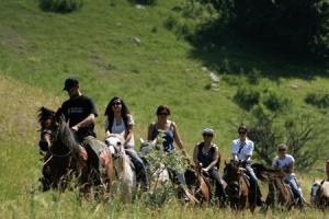 konji 3