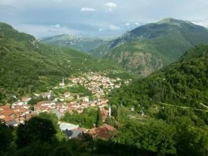 Zirovnica