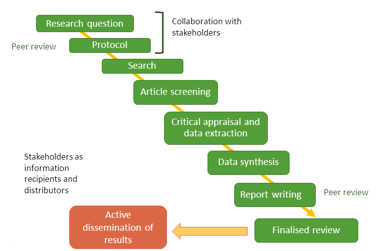 Basic steps of conducting a systematic review.
