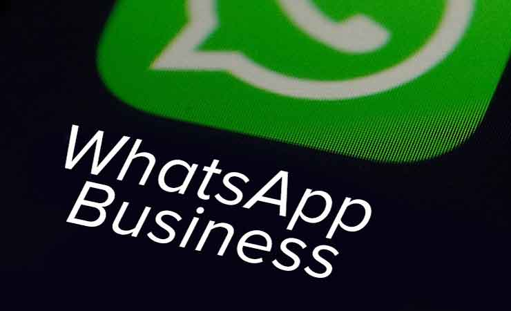 WhatsApp Business app now available on iOS - NP News24