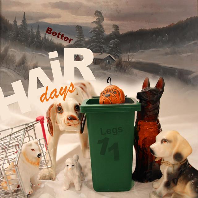Better Hair Days (2006-2017)