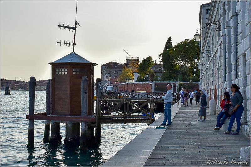 В ритме Венеции