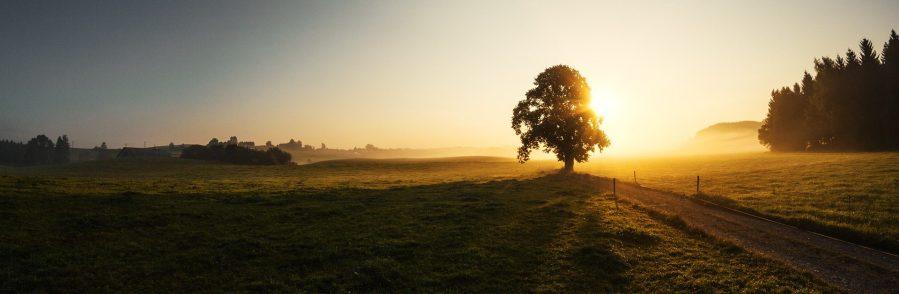 sunrise-1696760_1920