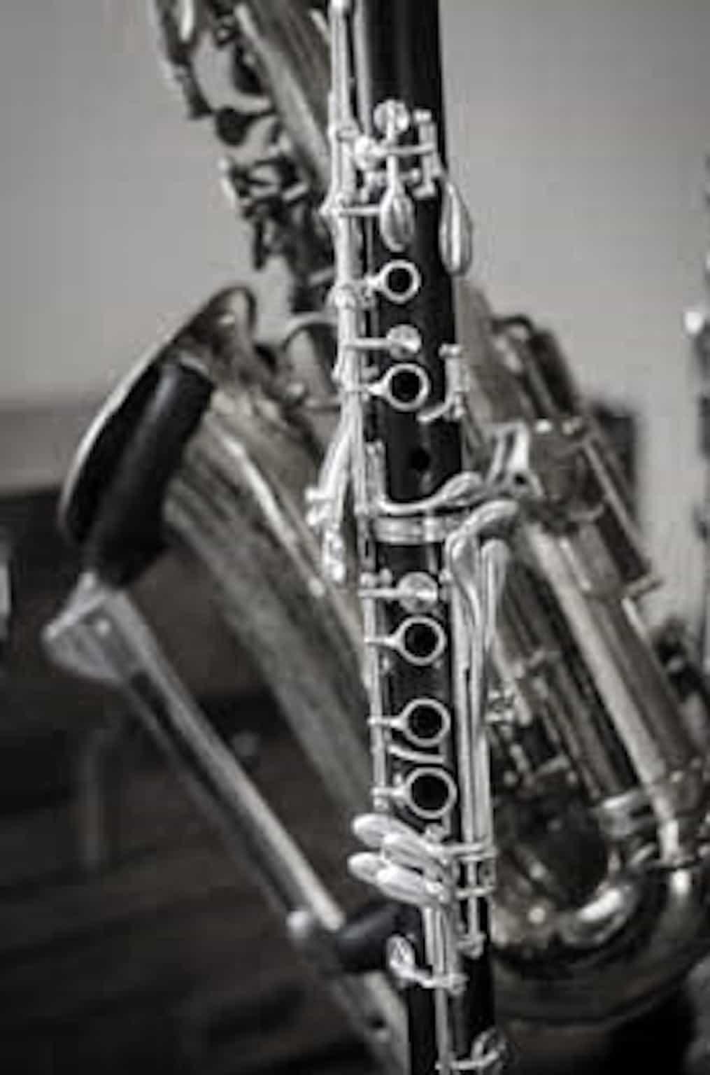 Kate Gittins : Saxophone, Clarinet, Flute, School Band