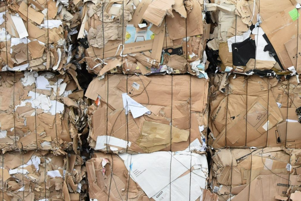 Webinar – Navigating Lincoln's Cardboard Ban for the Commercial Sector