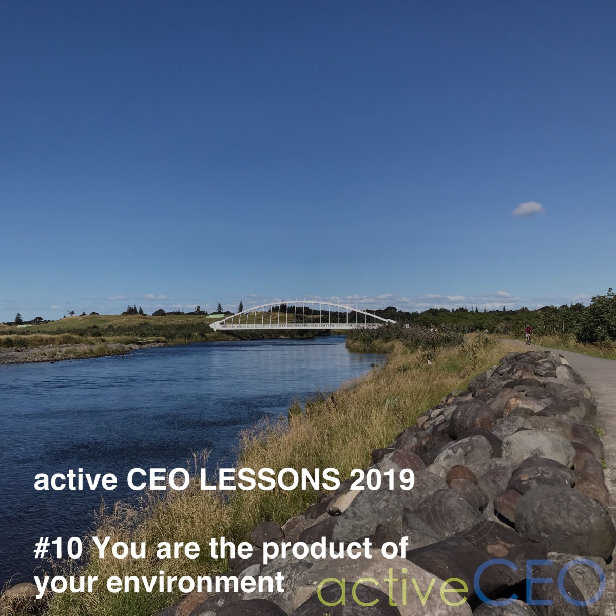 active CEO Lessons 2019 #10 You are the product of your environment