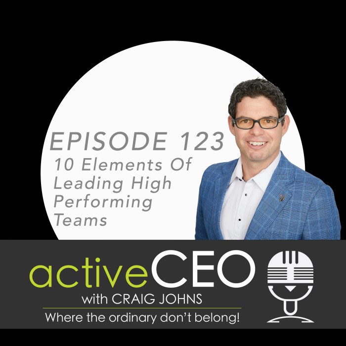 active CEO Podcast Craig Johns NRG2Perform High Performance Leadership 10 Elements Of Leading High Performing Teams