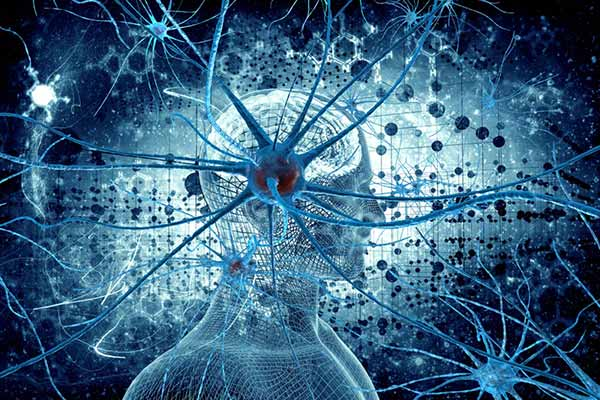Neurons understands human words; can learn to communicate