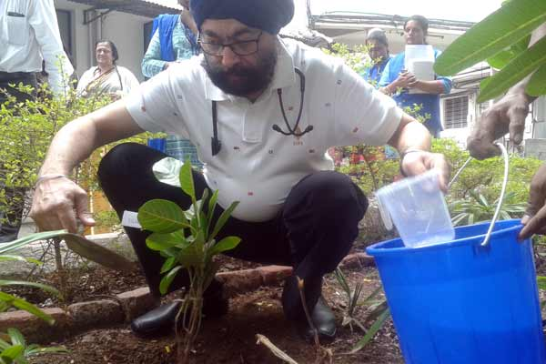 Doctors of Jehangir Hospital mark 'Doctor's Day' with tree plantation drive