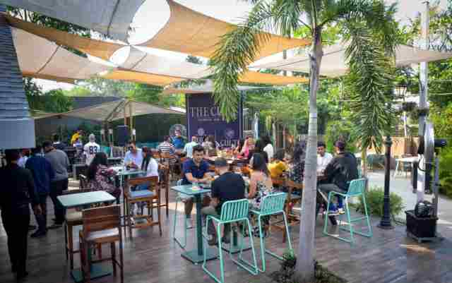 Make your Sunday more exciting with the Cult Terra Brunch