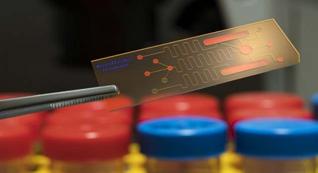 Biochip Market to Witness a Double-Digit CAGR By 2025 - TechSci Research
