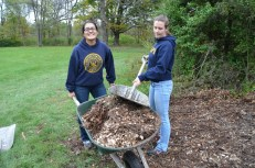 Day of Caring1
