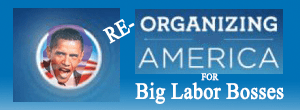 PageLines- re-Organizing_For_America_300x110-final.png