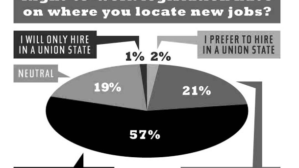 new-job-location-survey-pie-chart