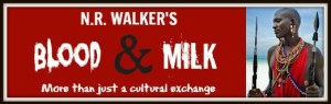 B&M promo banner 1 with border