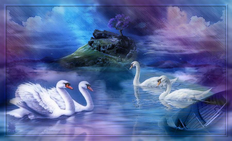 El estanque de los Cisnes