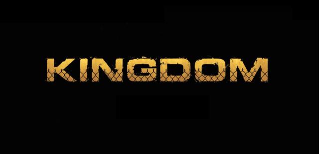 kingdom-saison-2b-test-dvd