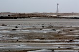 The Cape Sable Island lighthouse, visible from Hawk Beach and the Drowned Forest, is the tallest lighthouse in Nova Scotia.