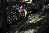 Visitors tackle the 175-step Jacob's Ladder in Victoria Park in Truro.