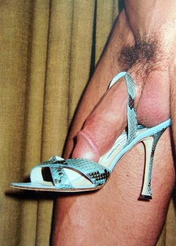 shoe penis